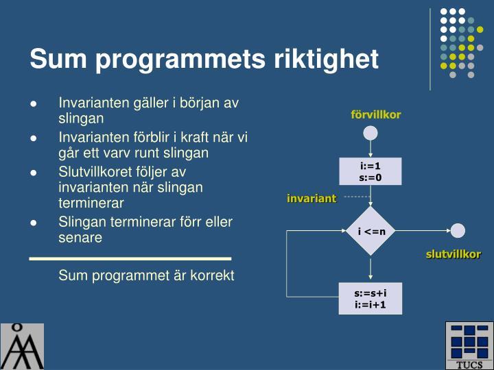 Sum programmets riktighet