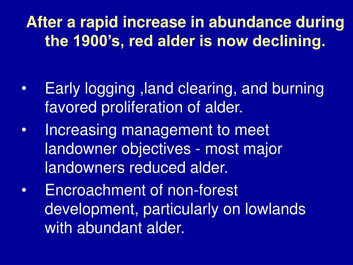 After a rapid increase in abundance during the 1900's, red alder is now declining.