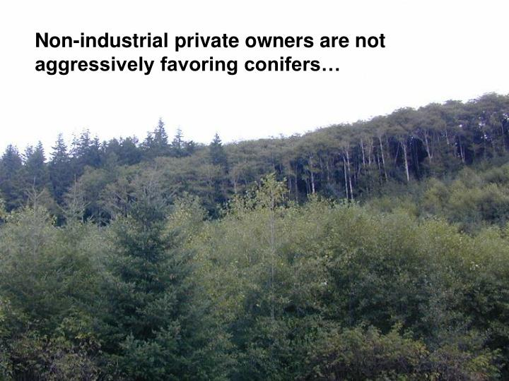 Non-industrial private owners are not aggressively favoring conifers…