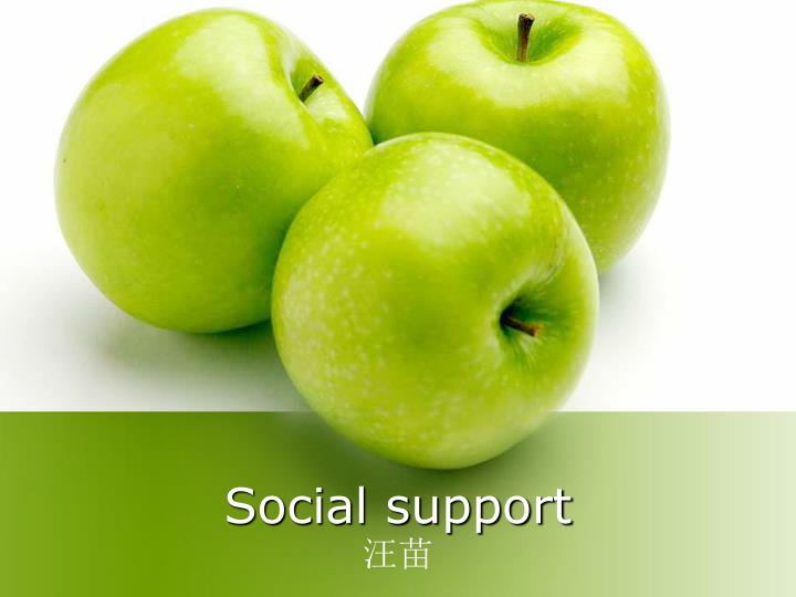 social support n.