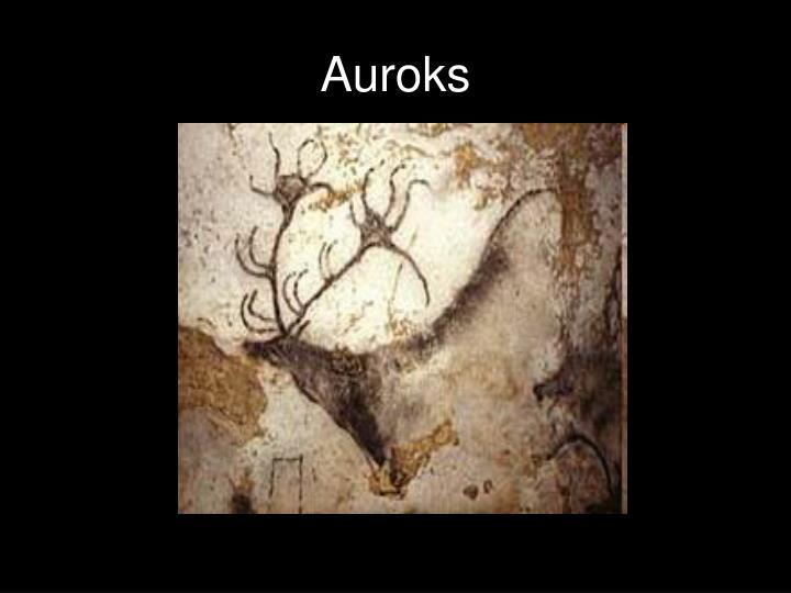 Auroks