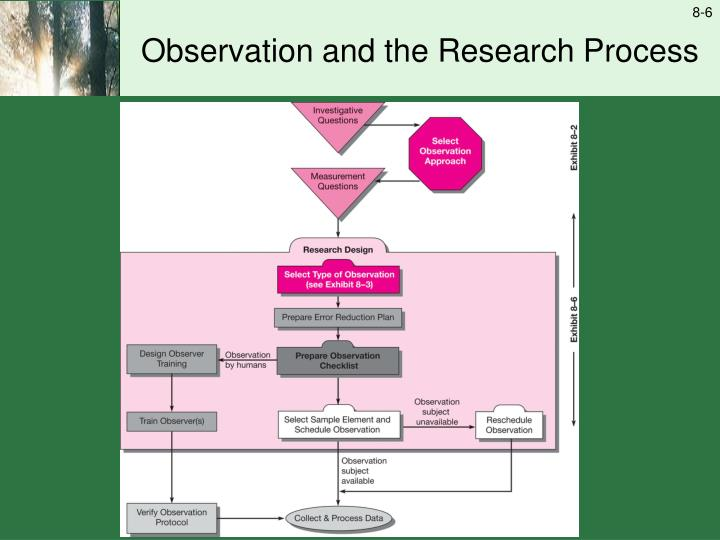 Observation and the Research Process