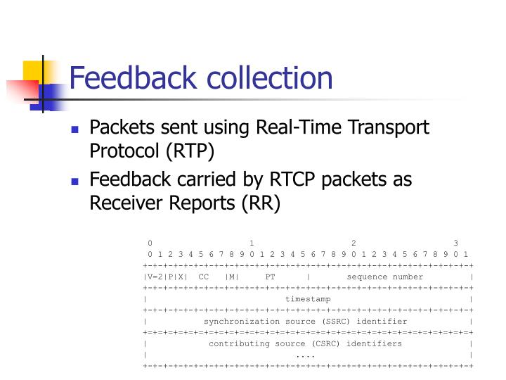 Packets sent using Real-Time Transport Protocol (RTP)