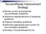 tsunamiready improvement strategy