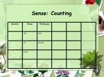 sense counting