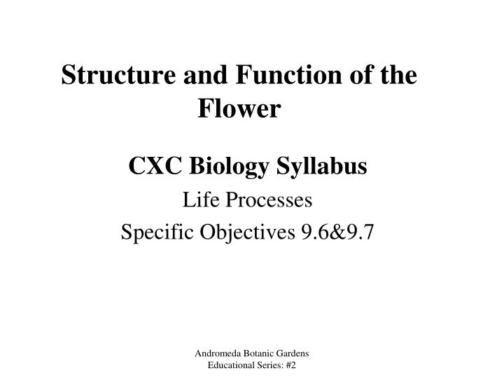 structure and function of the flower n.