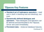 tspaces key features