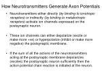 how neurotransmitters generate axon potentials