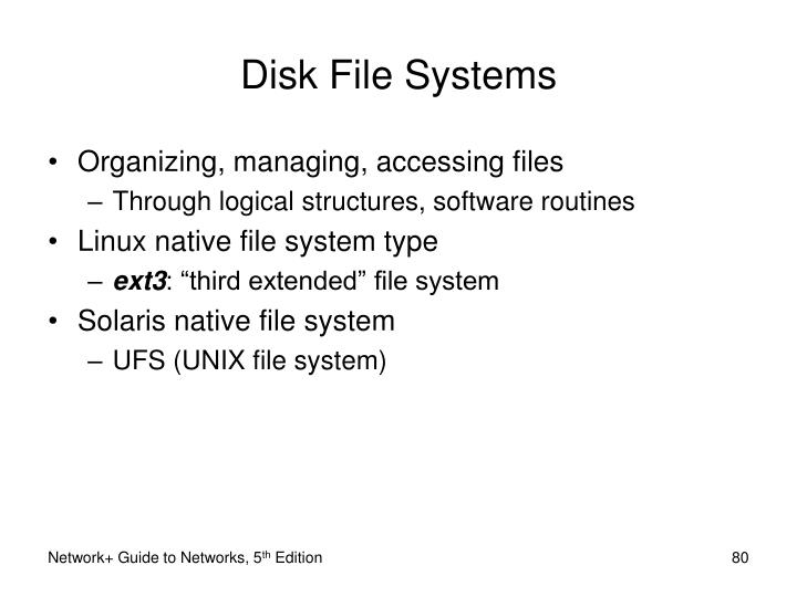 Disk File Systems