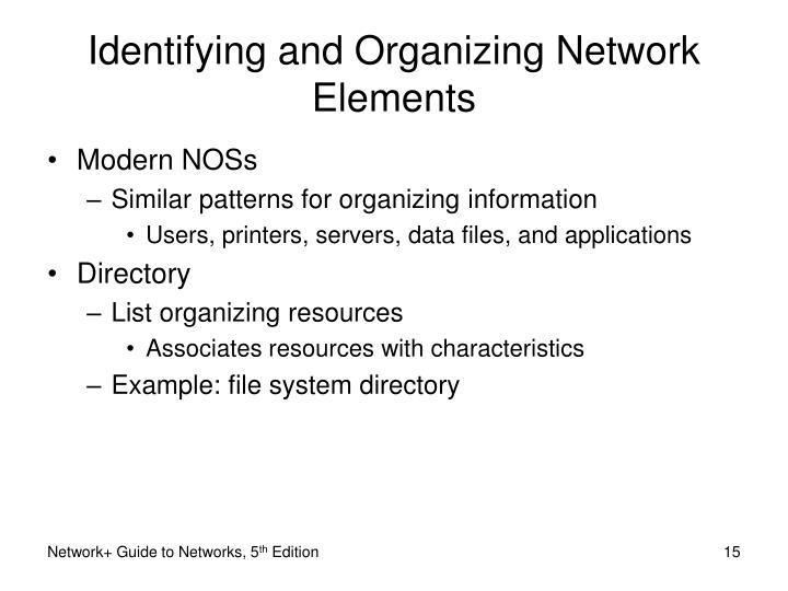 Identifying and Organizing Network Elements