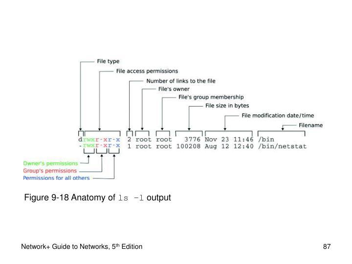 Figure 9-18 Anatomy of