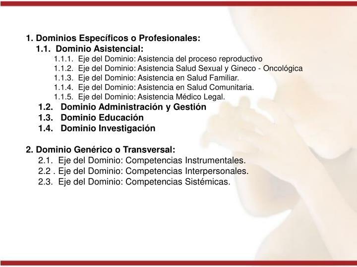 1. Dominios Específicos o Profesionales: