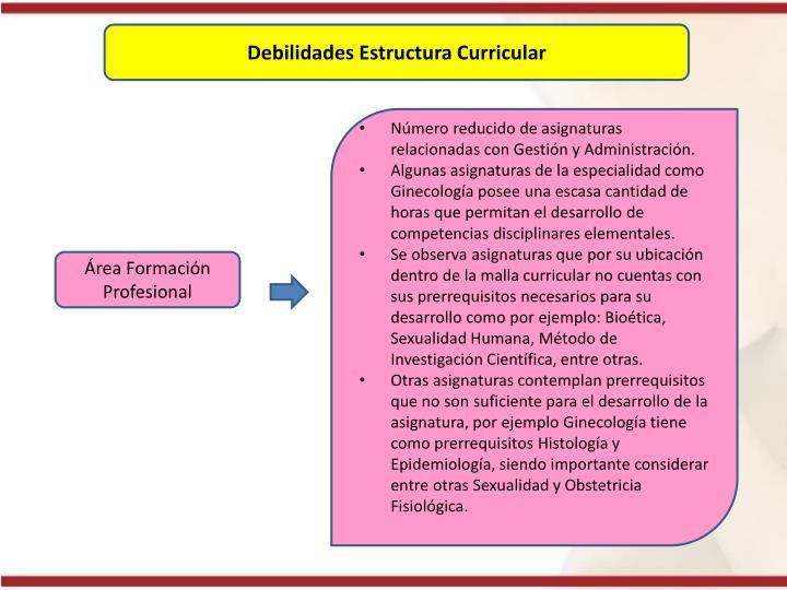 Debilidades Estructura Curricular
