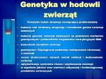 genetyka w hodowli zwierz t1
