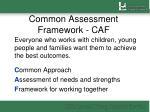 common assessment framework caf