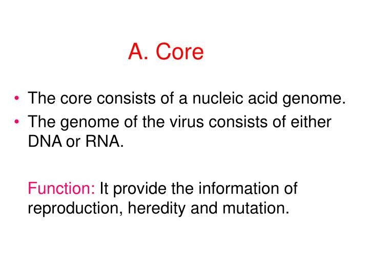 A. Core