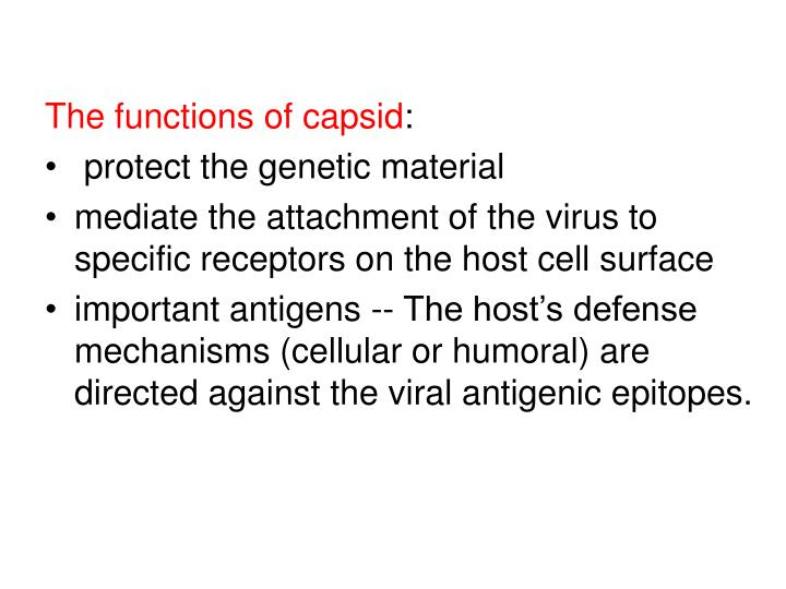 The functions of capsid