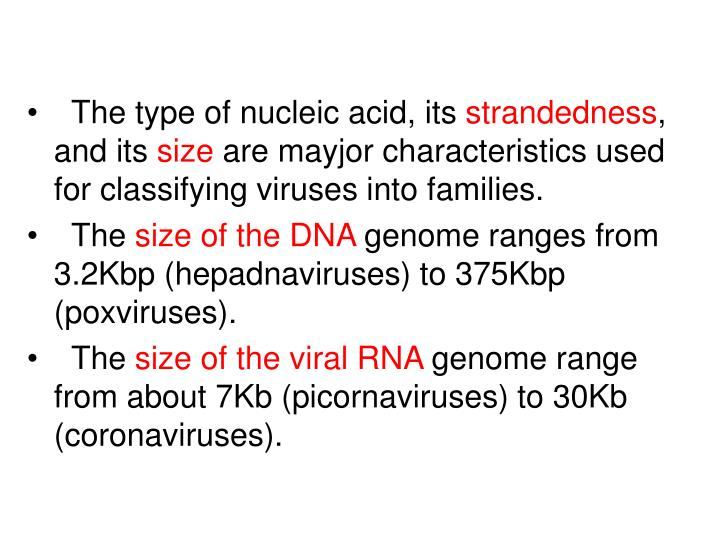The type of nucleic acid, its