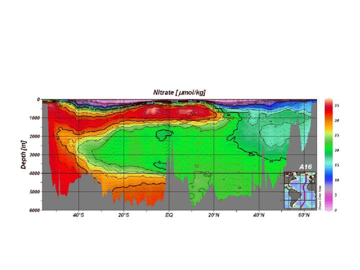 Geotraces working group 11 12 september 2007 atlantic ocean tropical subtropical region