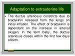adaptation to extrauterine life1
