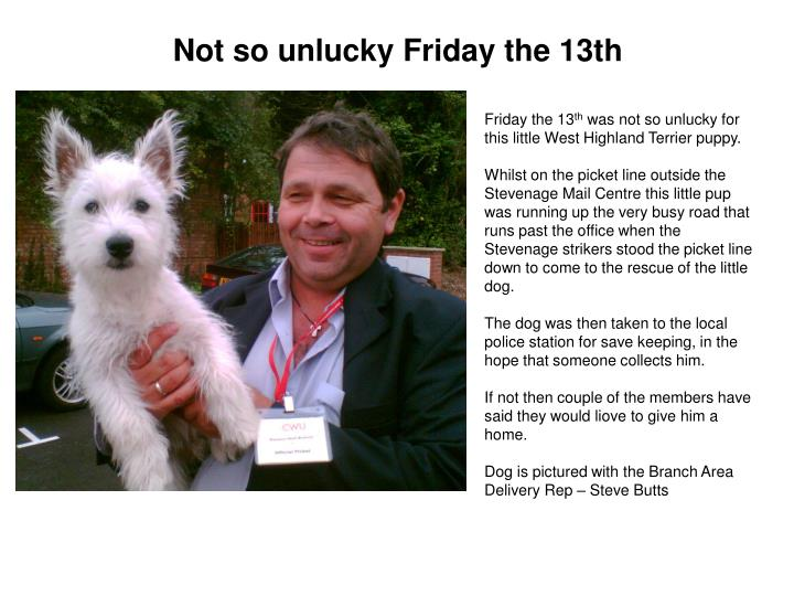 Not so unlucky Friday the 13th