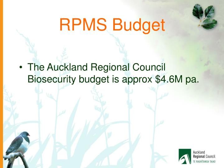 RPMS Budget