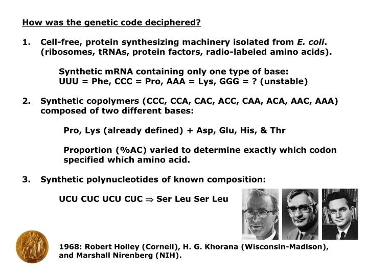 How was the genetic code deciphered?
