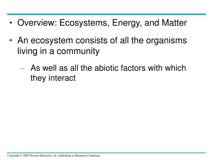 Overview: Ecosystems, Energy, and Matter