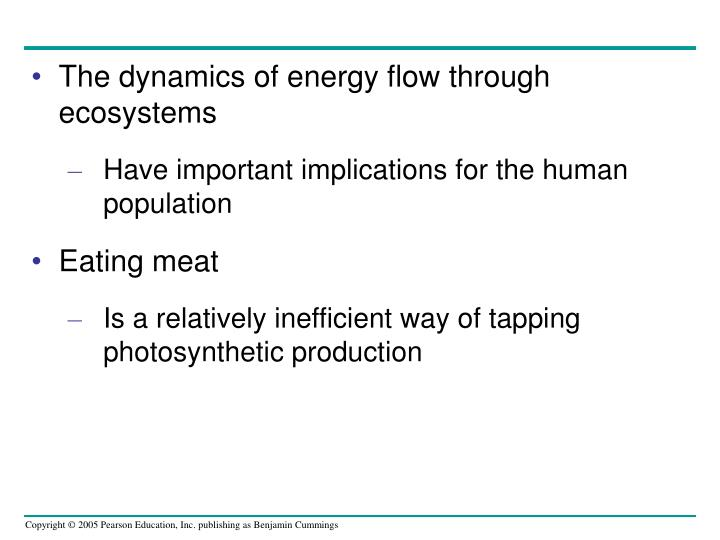 The dynamics of energy flow through ecosystems