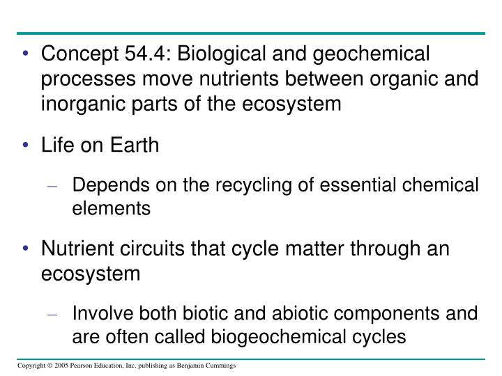 Concept 54.4: Biological and geochemical processes move nutrients between organic and inorganic parts of the ecosystem