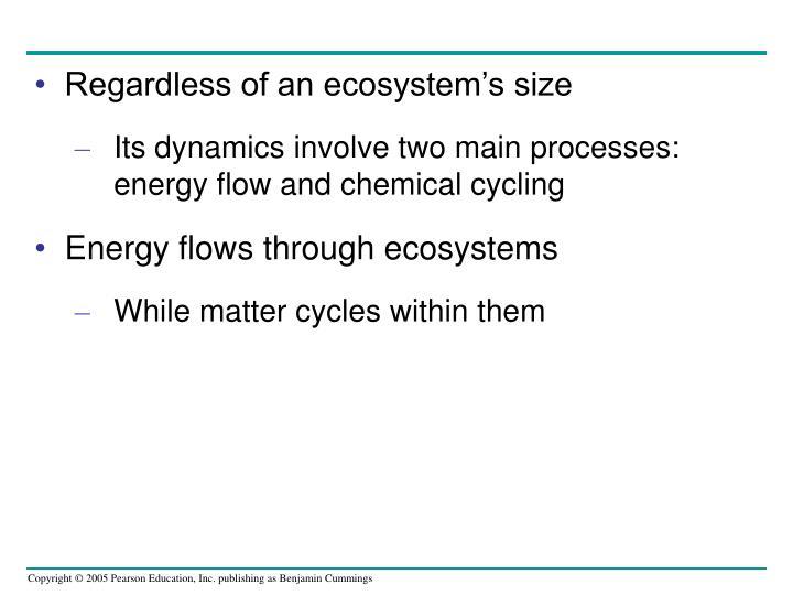 Regardless of an ecosystem's size