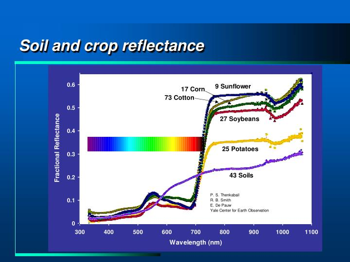 Soil and crop reflectance