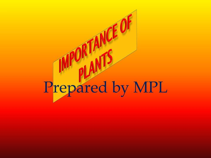 importance of plants n.