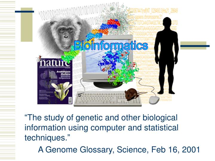 an introduction to biotechnology the use of biological information mainly dna Introduction to biotechnology process control and instrumentation online training, tutorials and information - learn all the basics, theory and practical application of industrial systems and devices.