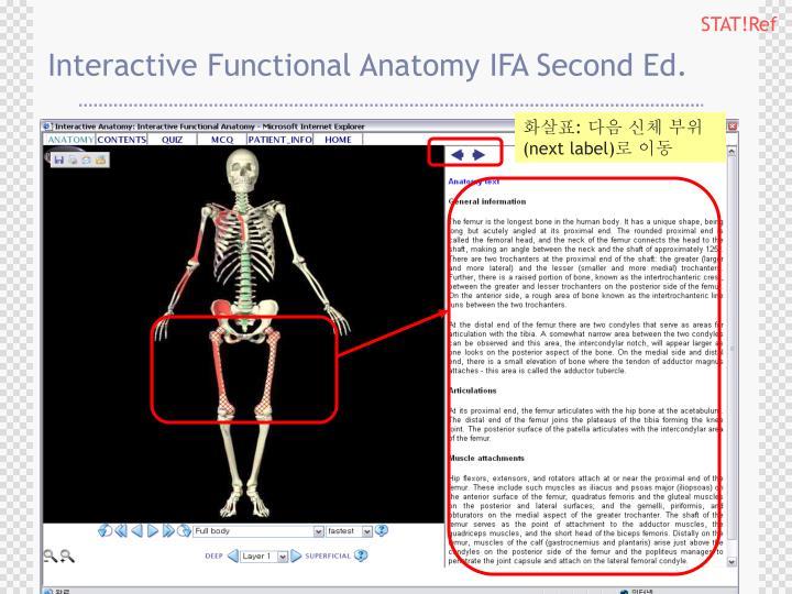 PPT - Anatomy tv 이용매뉴얼 PowerPoint Presentation - ID:6372189