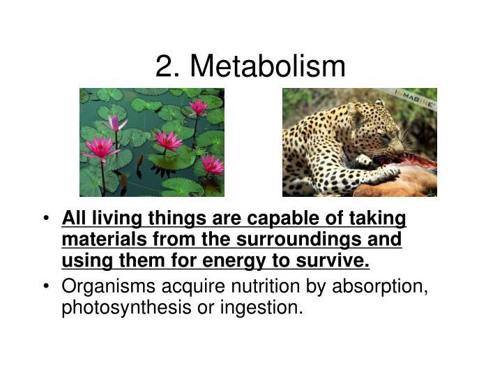 2. Metabolism