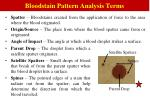 bloodstain pattern analysis terms
