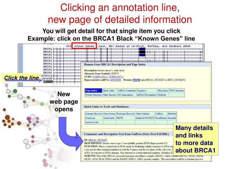 Click the line
