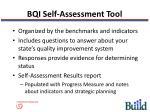 bqi self assessment tool