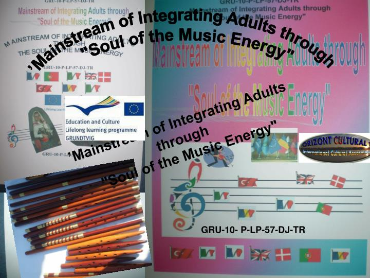'Mainstream of Integrating Adults through