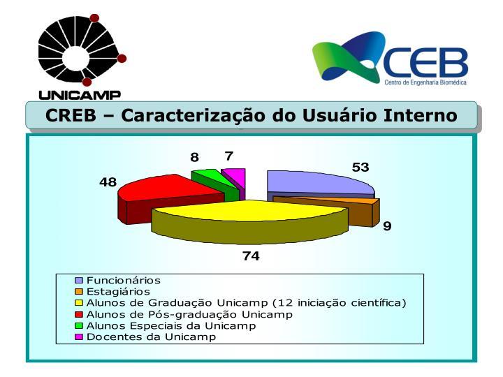 CREB – Caracterização do Usuário Interno