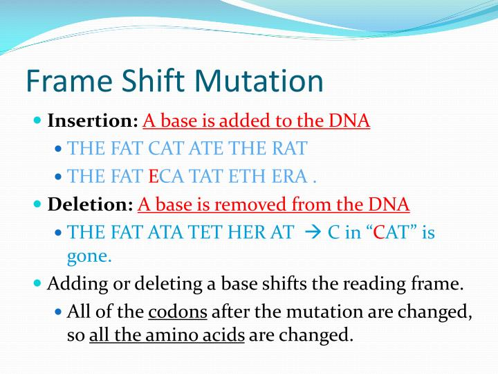 Frame Shift Mutation