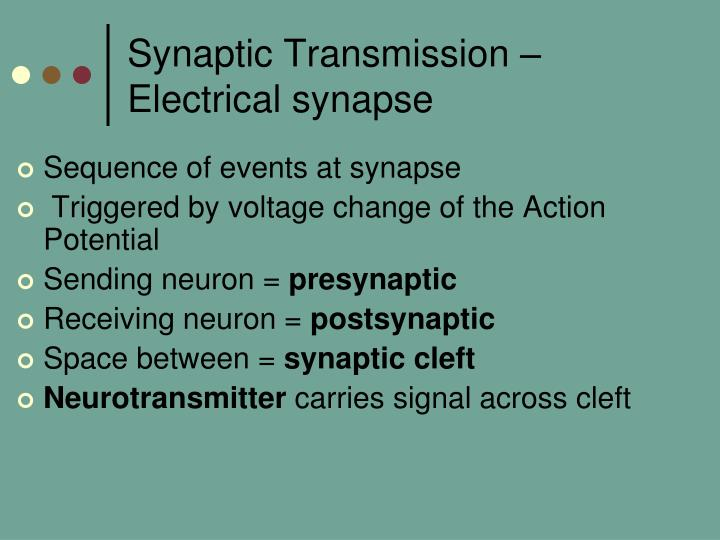 Synaptic Transmission – Electrical synapse
