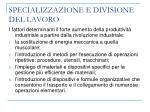 specializzazione e divisione del lavoro