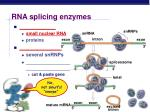 rna splicing enzymes