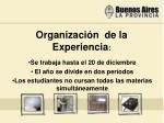organizaci n de la experiencia