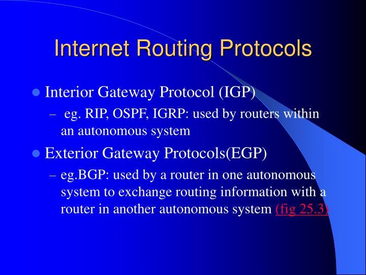 Internet Routing Protocols