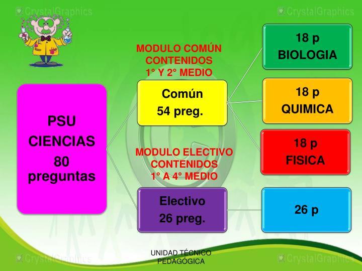MODULO COMÚN CONTENIDOS