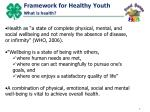 framework for healthy youth what is health