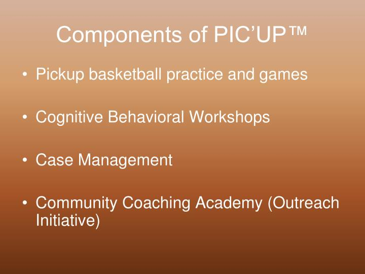 Components of PIC'UP